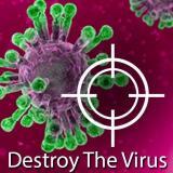 Destroy The Corona Virus
